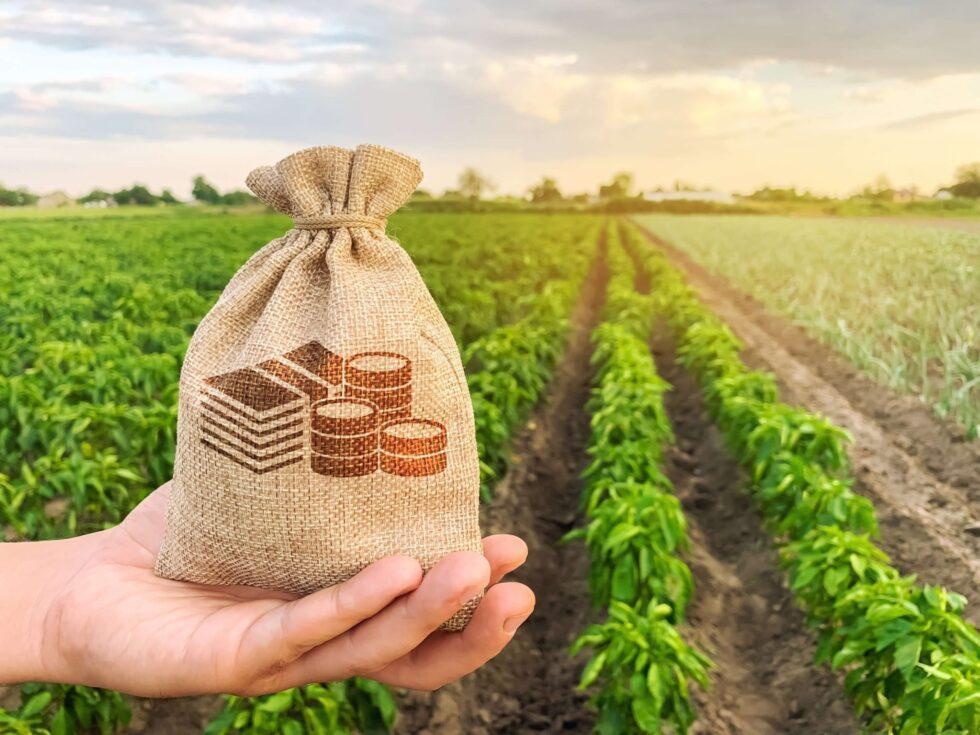 PIB do agro avança para recorde em 2020